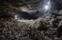 Un pat gigantic de oase adunate de hiene de-a lungul a mii de ani a fost descoperit într-o peșteră din Arabia Saudită