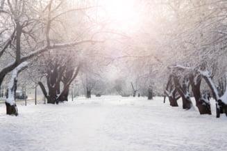 Meteorologii anunta ninsori, precipitatii si polei in toata tara