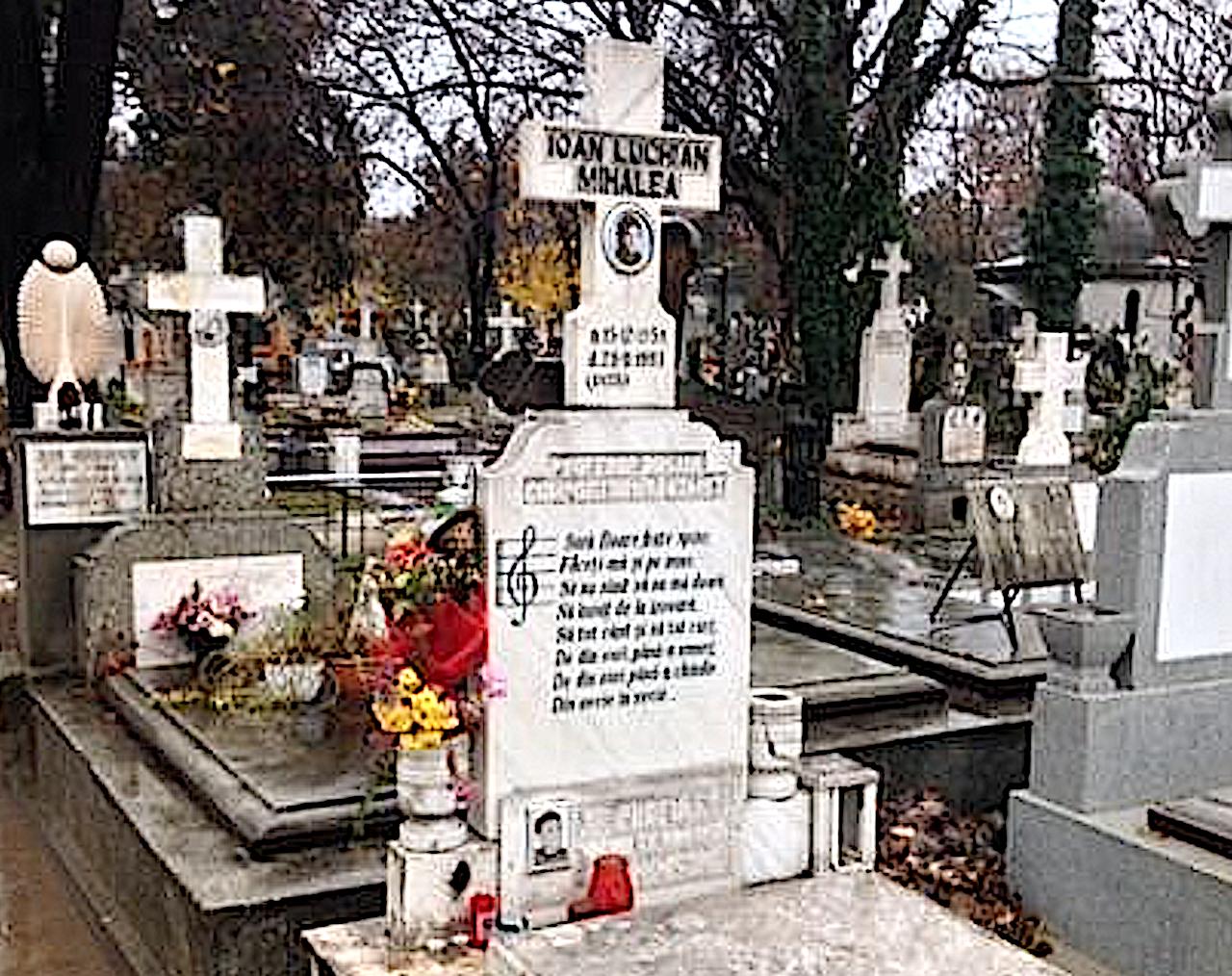 Misterele încă nedezlegate ale asasinarii lui Ioan Luchian Mihalea. A fost o crimă comandată de cercurile gay din politică?!