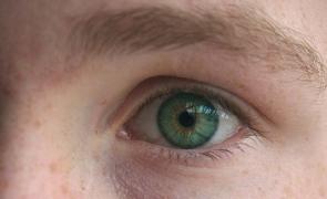 redau viziunea orbilor vederea îmbunătățită la 50 de ani